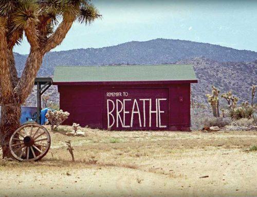 Hoe goed ademen je leven verandert